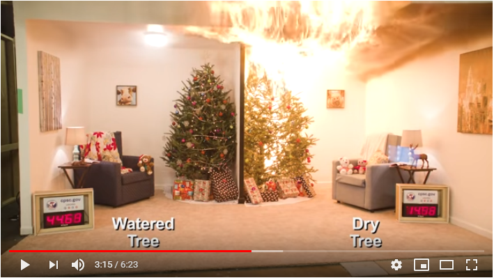 A new video shows the fire hazards of dry Christmas trees.  The WGFC encourages families and businesses to practice safety for the holiday season.