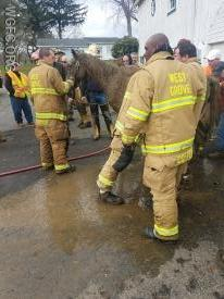 Crews work to clean the horse after it was lifted to its feet.