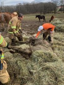 West Grove Fire Company Crews calm a horse stuck in the mud during a two hour incident in Penn Township.